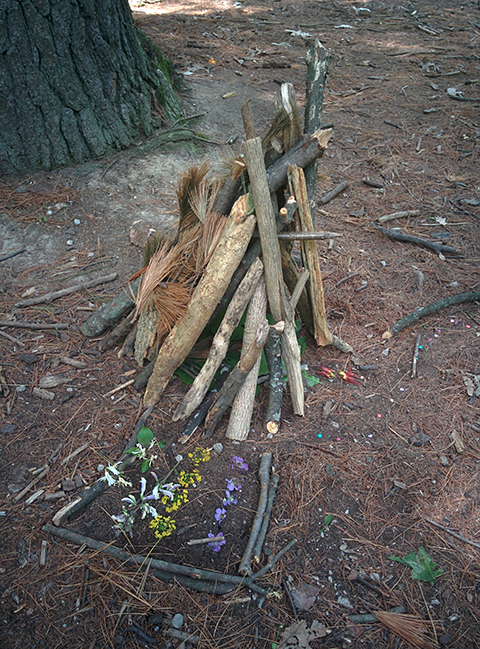 One of the fairy houses constructed for the fairy folk living in the Arb.
