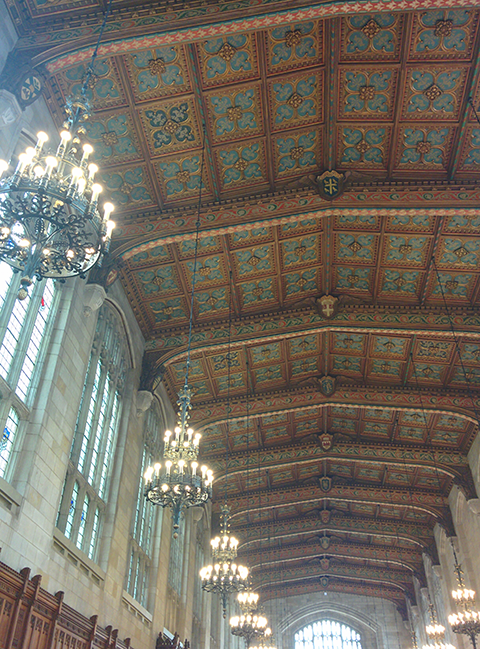 The ceiling of the Law Library.