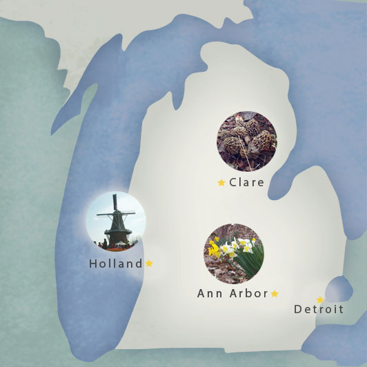 A map of Michigan, highlighting Ann Arbor, Clare, Detroit and Holland, MI.