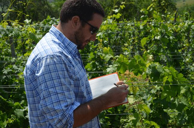 Field research in Transylvania