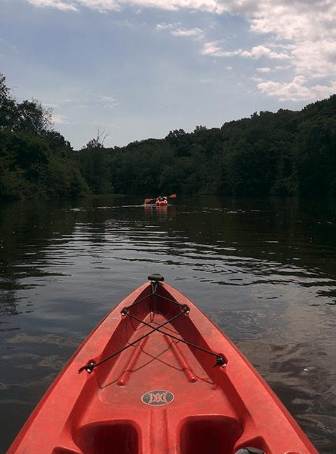 Weekend Activities in Ann Arbor