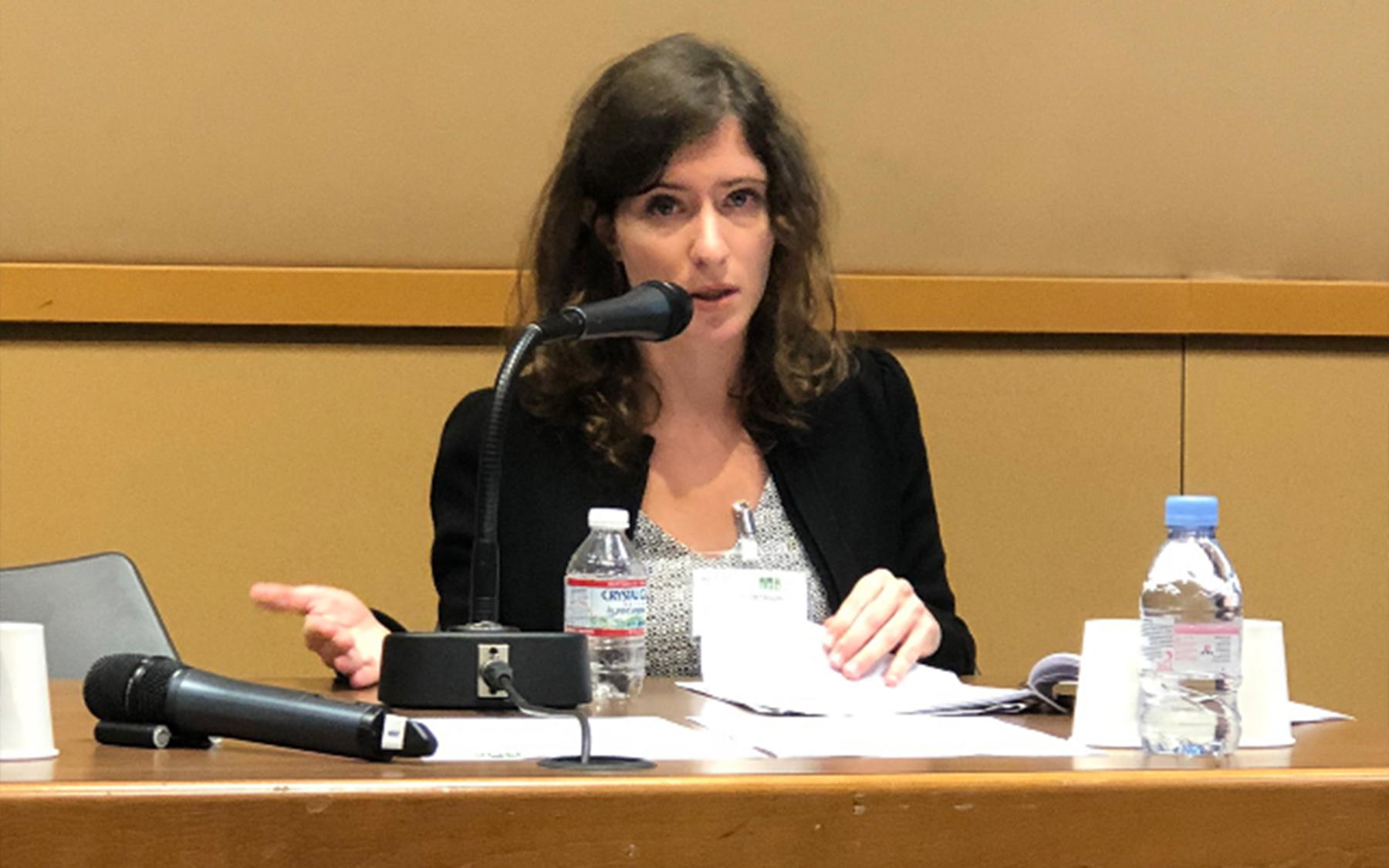 Sarah Rozenblum sits at a conference table.