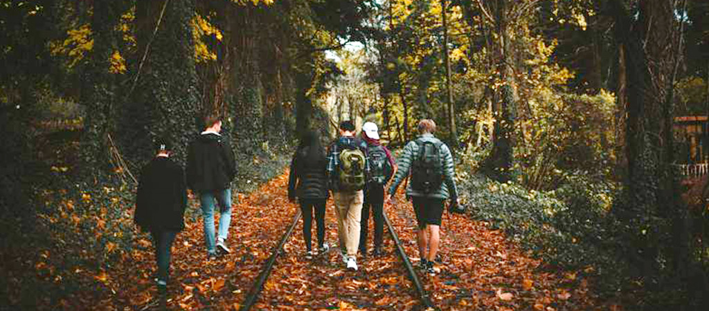 A group of teenagers walk through an autumn forest.